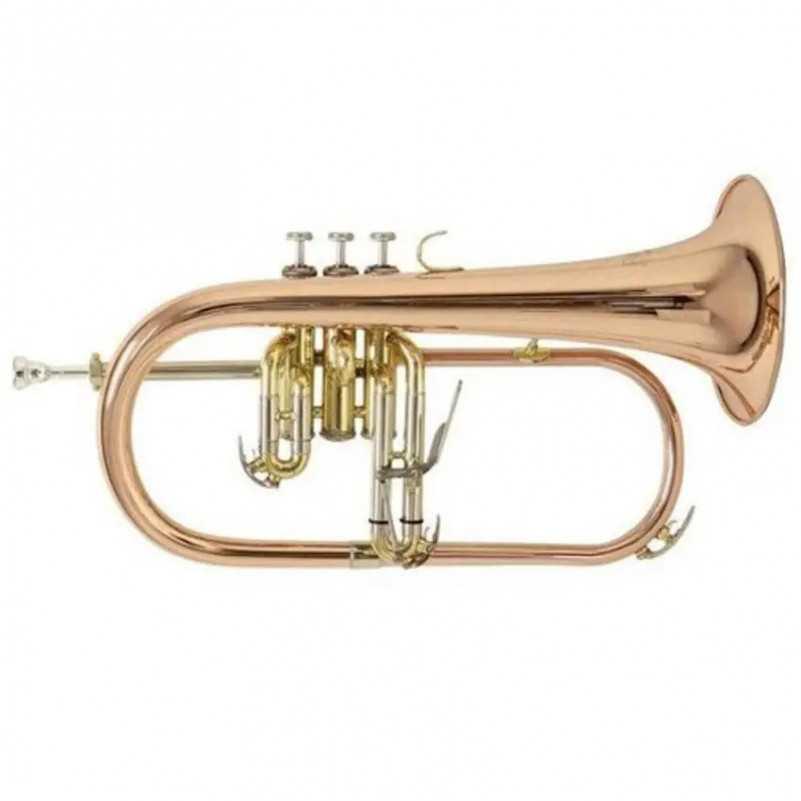 FLISCORNO BACH FH 501L PISTONES LACADO Bach - 1